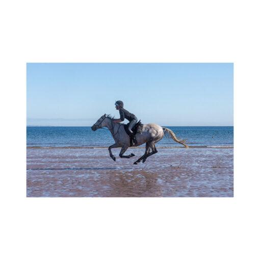 yellowcraig beach galloping horse